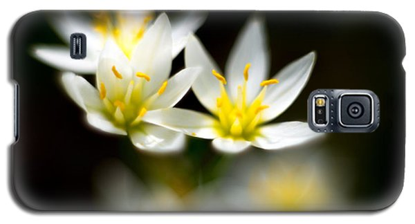 Galaxy S5 Case featuring the photograph Small White Flowers by Darryl Dalton