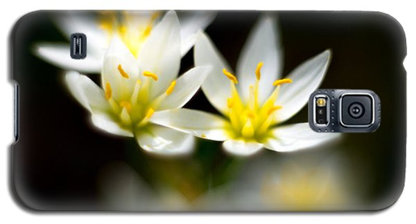 Small White Flowers Galaxy S5 Case