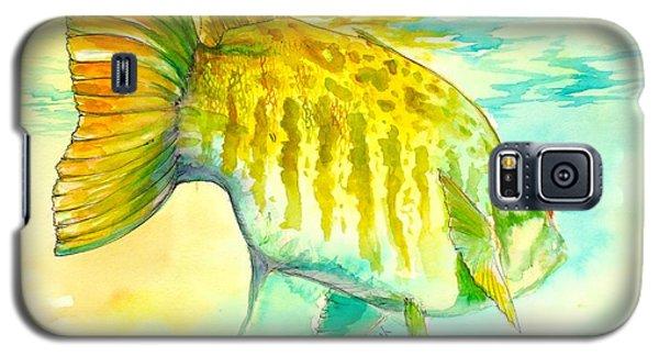 Alligator Galaxy S5 Case - Smallie Patrol by Yusniel Santos