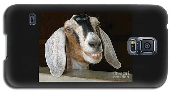 Smile Pretty Galaxy S5 Case by Ann Horn