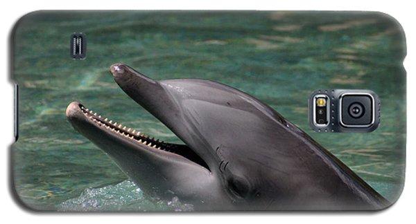 Smiling Dolphin Galaxy S5 Case by Pamela Walton
