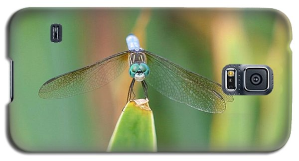 Smiling Dragonfly Galaxy S5 Case by Karen Silvestri