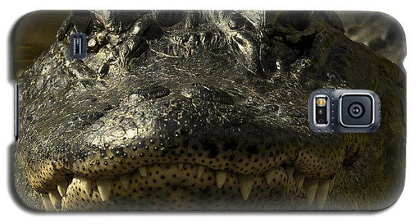 Smiling Gator Galaxy S5 Case