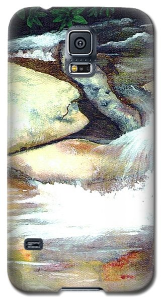 Smoky Mountains Waterfall Galaxy S5 Case by Patricia Griffin Brett