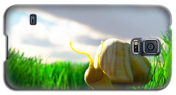 Snail And Grass... Galaxy S5 Case by Tim Fillingim