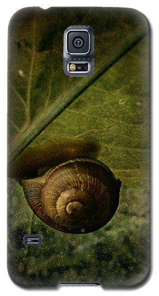 Snail Camp Galaxy S5 Case by Barbara Orenya