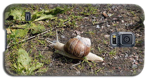 Galaxy S5 Case featuring the photograph Snail by Leif Sohlman