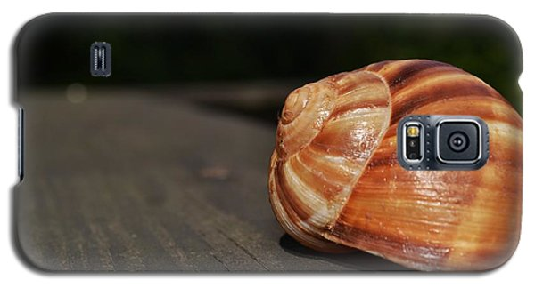 Galaxy S5 Case featuring the photograph Snail Shell II by Mary Zeman