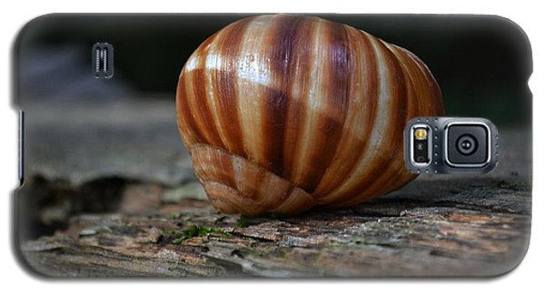 Galaxy S5 Case featuring the photograph Snail Shell by Mary Zeman