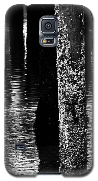 Snails In Black And White Galaxy S5 Case