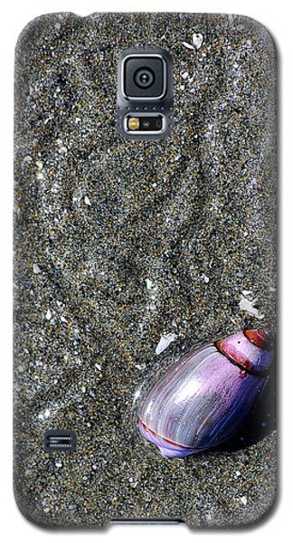 Galaxy S5 Case featuring the photograph Snail's Pace by Lisa Phillips