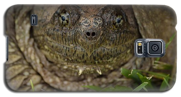 Galaxy S5 Case featuring the photograph Snapper by Randy Bodkins