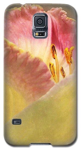 Sneak Peak Galaxy S5 Case