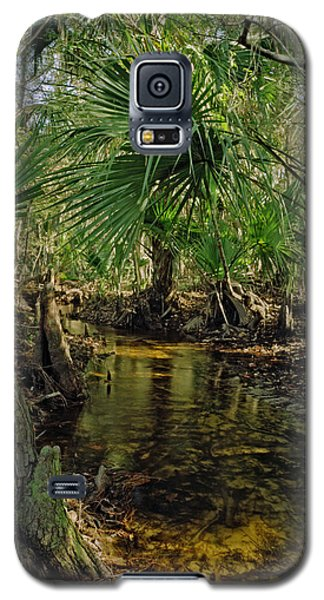 Snell Creek. Osceola County Florida Galaxy S5 Case