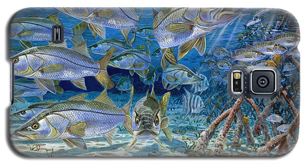 Catfish Galaxy S5 Case - Snook Cruise In006 by Carey Chen