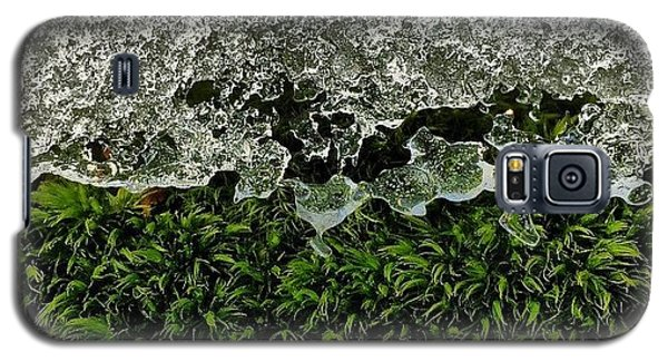 Detail Galaxy S5 Case - Snow & Moss, 2015.02.07 #bmr #lehman by Aaron Campbell