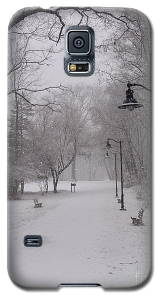 Snow At Bulls Island - 29 Galaxy S5 Case