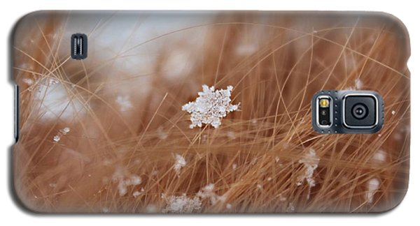 Snow Beauty Galaxy S5 Case