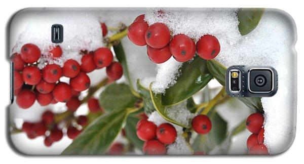 Snow Berries Galaxy S5 Case