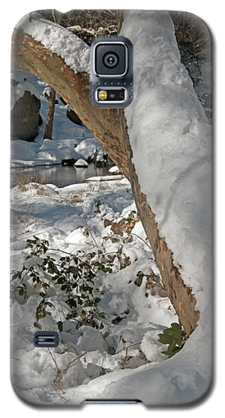 Snow Capped Galaxy S5 Case