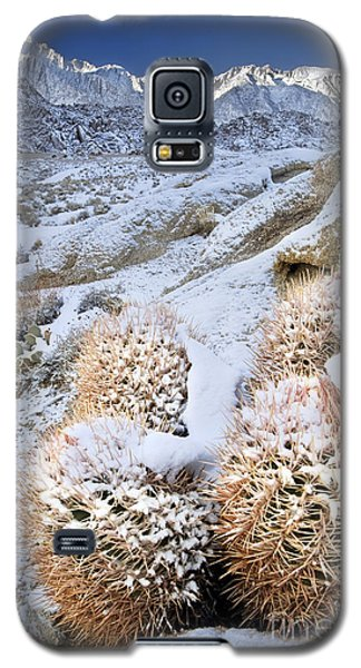 Galaxy S5 Case featuring the photograph Snow Covered Cactus Below Mount Whitney Eastern Sierras by Dave Welling