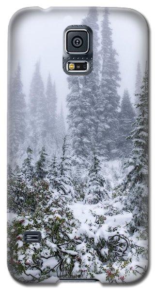 Snow Covered Mountain Ash Galaxy S5 Case