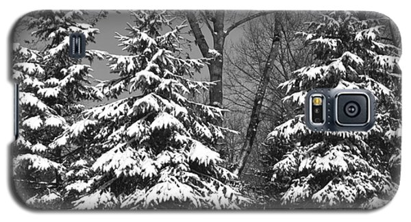 Snow Covered Pines Black And White Galaxy S5 Case