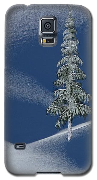 Snow Covered Tree And Mountains Color Galaxy S5 Case