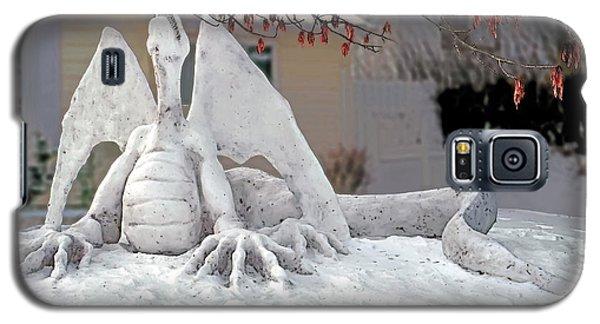 Snow Dragon 3 Galaxy S5 Case by Terry Reynoldson