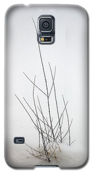 Snow Drifts In Mongolia Galaxy S5 Case