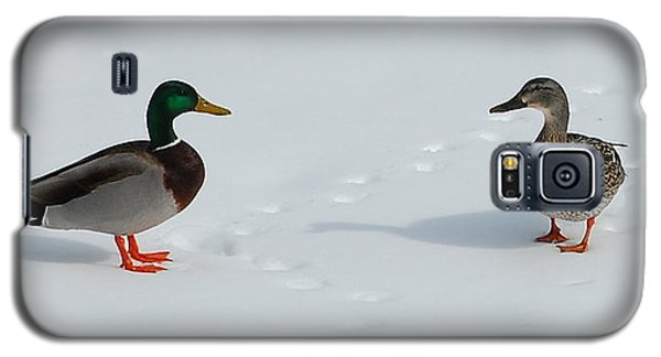 Galaxy S5 Case featuring the photograph Snow Ducks by Mim White
