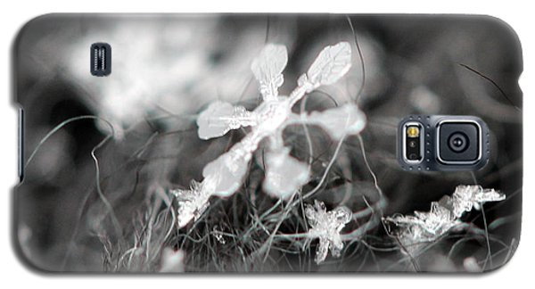 Galaxy S5 Case featuring the photograph Snow Flower by Stacey Zimmerman
