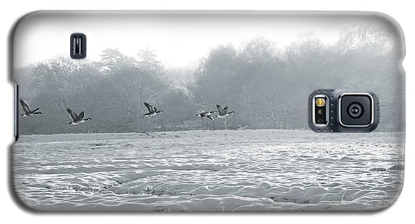Snow And Geese Galaxy S5 Case by David Davies