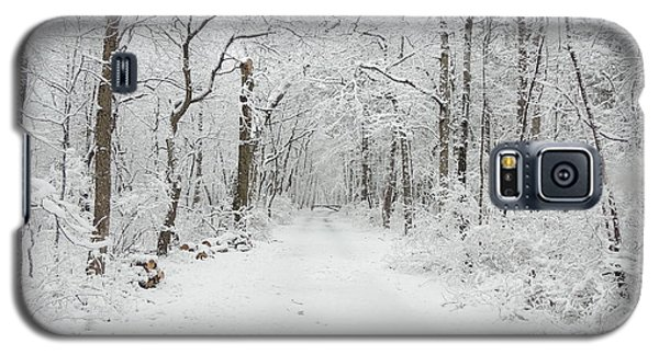 Snow In The Park Galaxy S5 Case