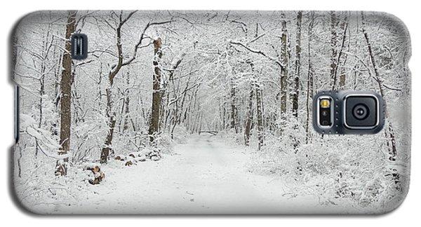Snow In The Park Galaxy S5 Case by Raymond Salani III