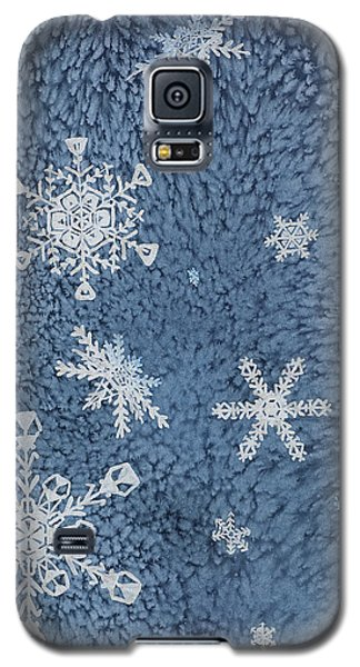 Galaxy S5 Case featuring the painting Snow Jewels by Margaret Bobb