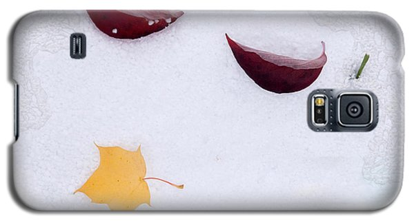 Snow Kissed Galaxy S5 Case