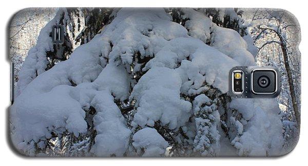 Snow-laden Tree Galaxy S5 Case by Jim Sauchyn