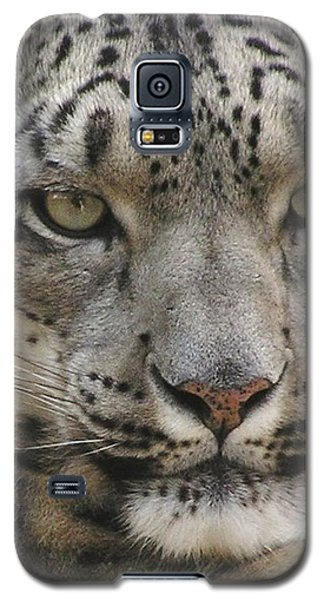 Galaxy S5 Case featuring the photograph Snow Leopard by Diane Alexander