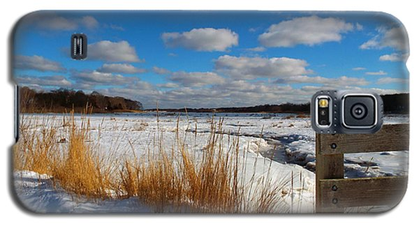 Galaxy S5 Case featuring the photograph Snow Marsh by Dianne Cowen