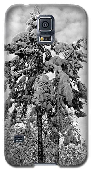 Snow Pillows Galaxy S5 Case