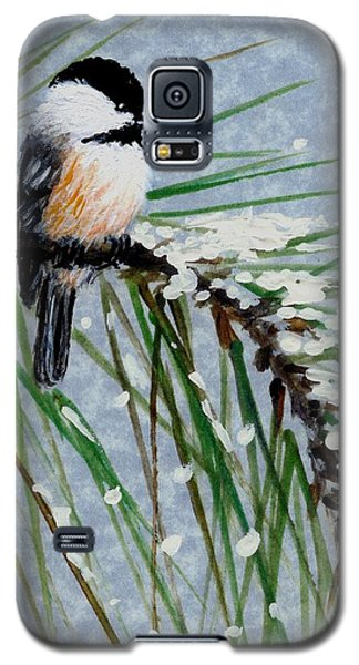 Snow Pine Chickadee Detail Print Bird 1 Galaxy S5 Case
