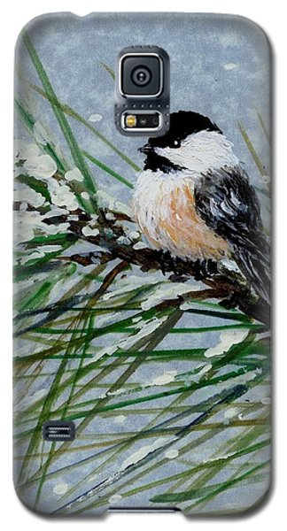 Snow Pine Chickadee Detail Print Bird 2 Galaxy S5 Case