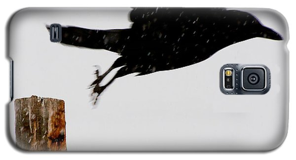 Galaxy S5 Case featuring the photograph Snow Raven Blurr by Britt Runyon