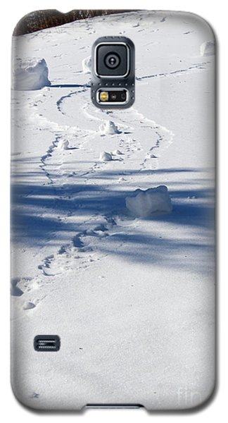 Snow Rollers Galaxy S5 Case