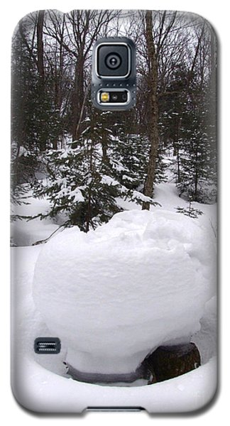Snow Sculpture - Algonquin - Canada Galaxy S5 Case by Phil Banks