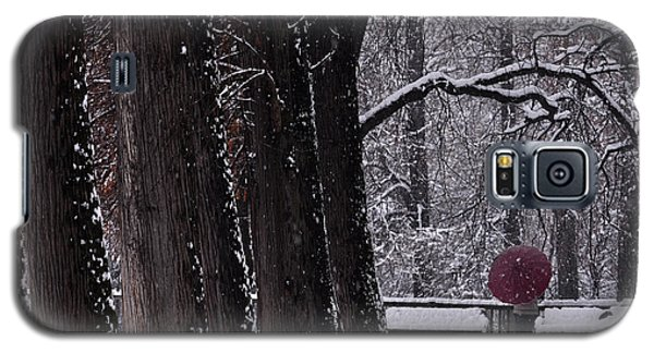 Galaxy S5 Case featuring the photograph Snow by Simona Ghidini