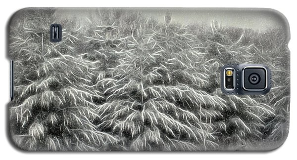 Snow Trees And Fox Textured Galaxy S5 Case