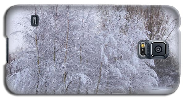 Snow Trees Galaxy S5 Case