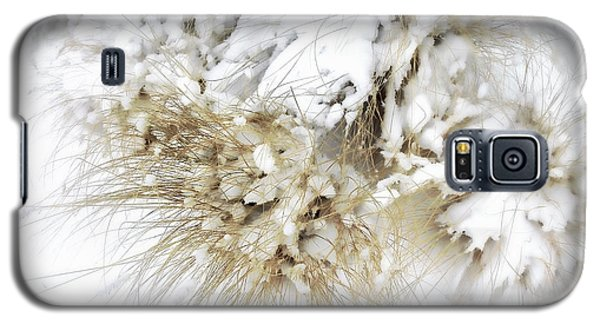 Snow Whiskers Galaxy S5 Case